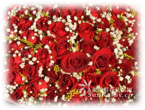 玫瑰写字动态图片素材