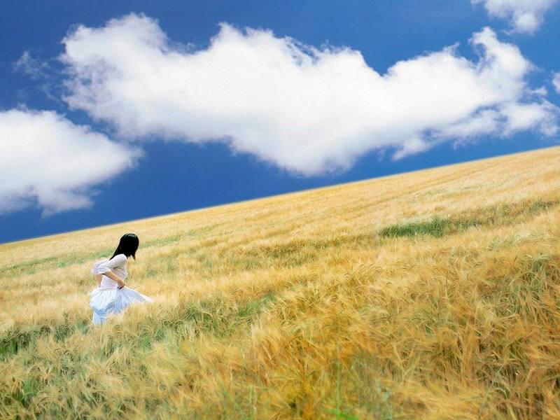 10个关于梦的真实秘密 - 俊逸 - 俊逸的博客