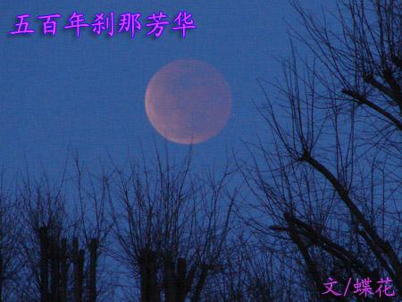 月亮,我寂寞的女神
