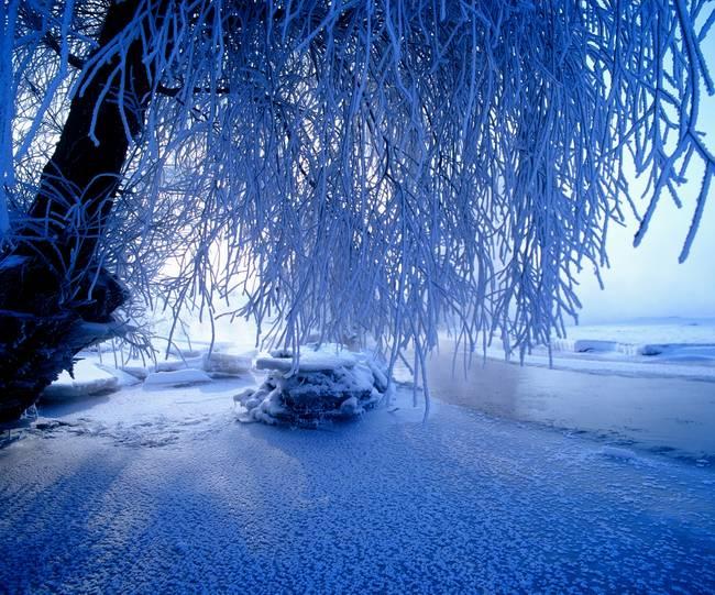 【那个飘雪的冬季,散文】