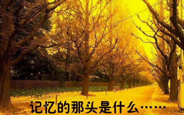 【原创】国庆假期将近,无法回家,思乡作 - 刘言飞语 - 刘言飞语