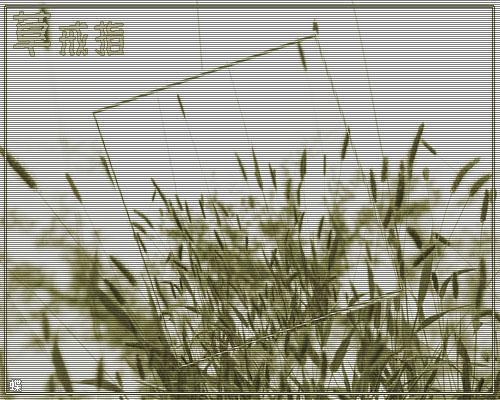 草戒指阅读_【江南歌词】草戒指_江山文学网