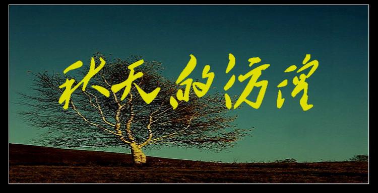 秋天景色树叶贴画