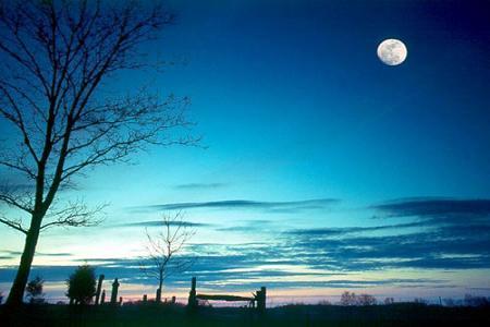 有哪些描写月亮的古诗