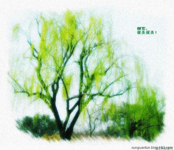 江南柳树燕子水墨画