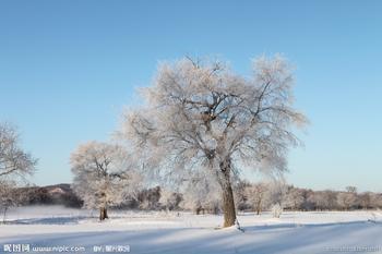 冬天,农家的土炕就成为温暖的摇篮.图片
