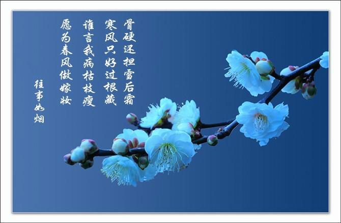 七律·情倾十五韵(下平)
