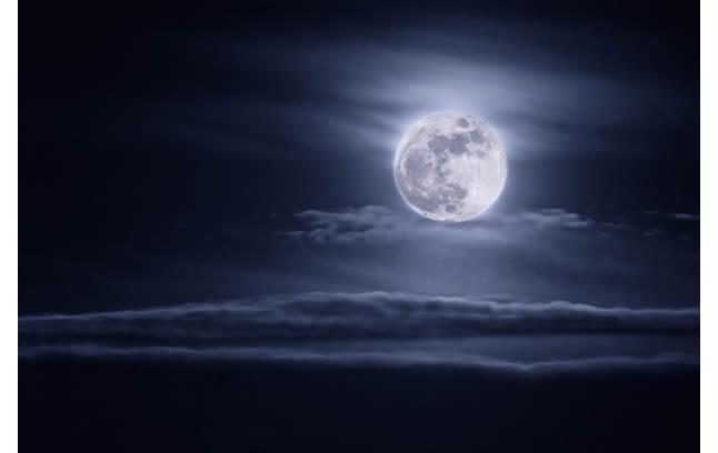 桂花飘香的夜晚仰望月亮