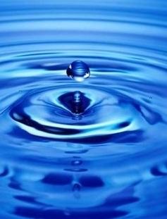 【江南】水的联想(散文)图片