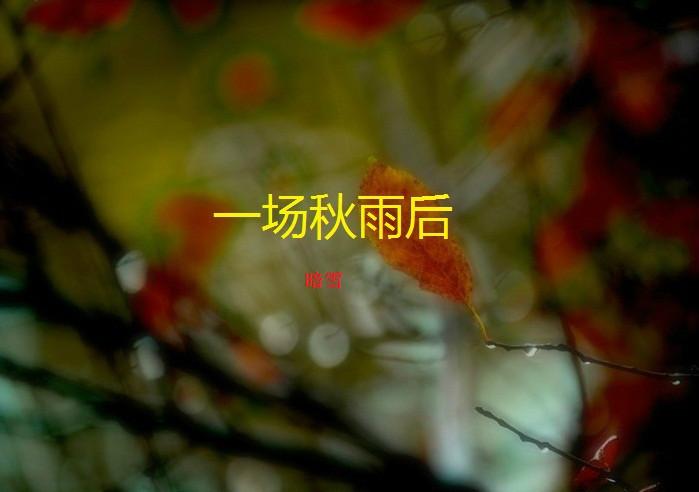 秋雨笛子演奏曲简谱