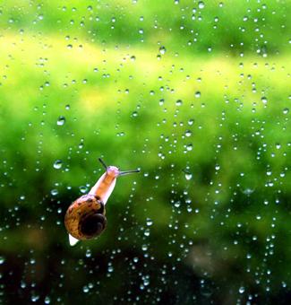 幼儿下雨简笔画彩色
