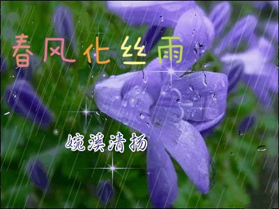 雨绵绵地下着,那古老的梧桐树枝舞叶摇,在风中歌唱着美丽,在雨中舞动