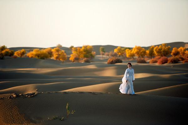 仿佛使我們看到一個歷經風雨,飽經滄桑的身影,堅定地佇立在茫茫沙漠之圖片