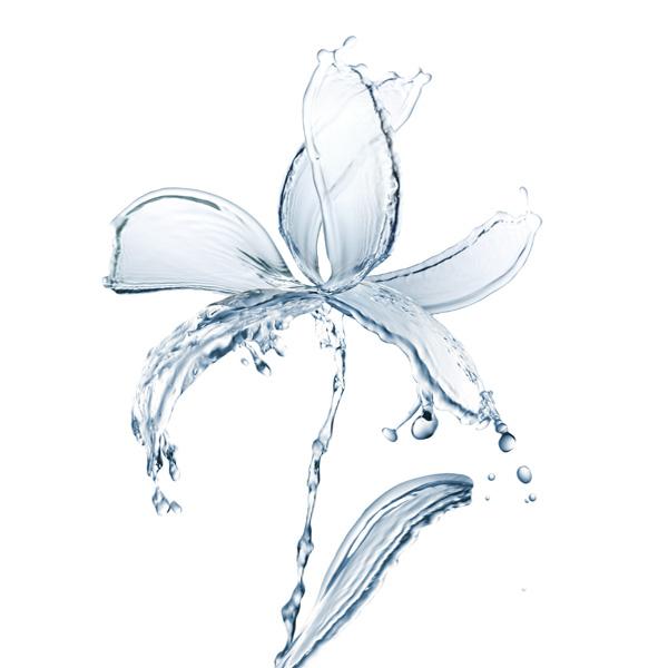 【一颗朱砂记前盟】    南海,观音菩萨的紫竹林里。    紫竹侍者,每日朝采百花之露,暮扫百草之泪,配适量忘情水调和,于子夜午时注入净瓶,是为净水。再经由仙家法术的修炼,那净水方有了起死回生的本领。    露,魂者;泪,血也。再得天地精华之滋润,这净水不免有了灵性:叹自己身世飘零,幸得仙童眷顾收集,方有容身之地。日积月累,心中对这份收留之情的感激越发炽烈只求急急地回报,以至于溢出了一颗水珠在瓶沿。宛若泪滴的形状,隐隐透出光亮的暗红色,像极一颗朱砂泪。    此时,正在打坐的观音菩萨,忽觉眼皮一动,忙伸
