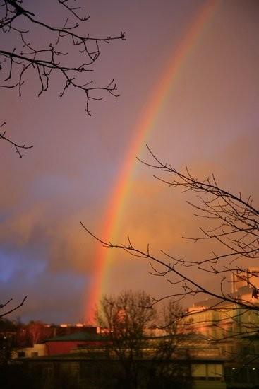 彩虹大海图片大全大图