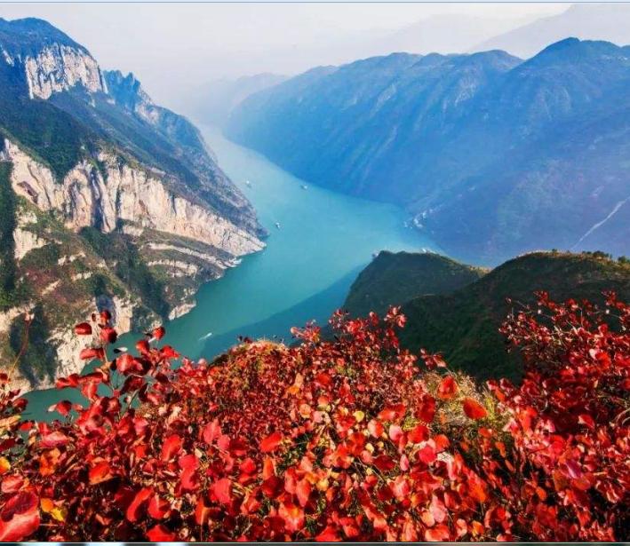 【柳岸】三峡的秋(yabo亚博体育苹果)