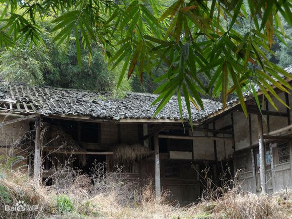 五指山斜阳竹林别墅图片