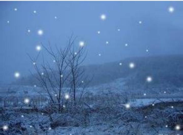 【八一】雪在落(外三首.家园)
