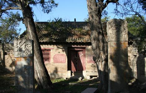 坤殿木原木图片