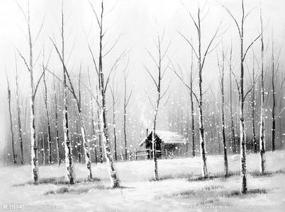 冬天夜晚树木图
