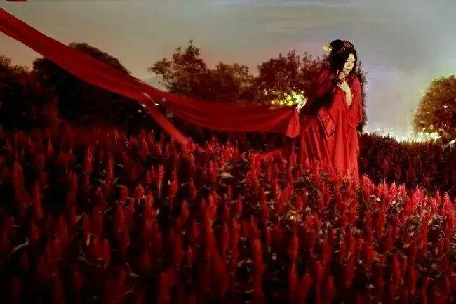 红衣彼岸花手绘古风伤感