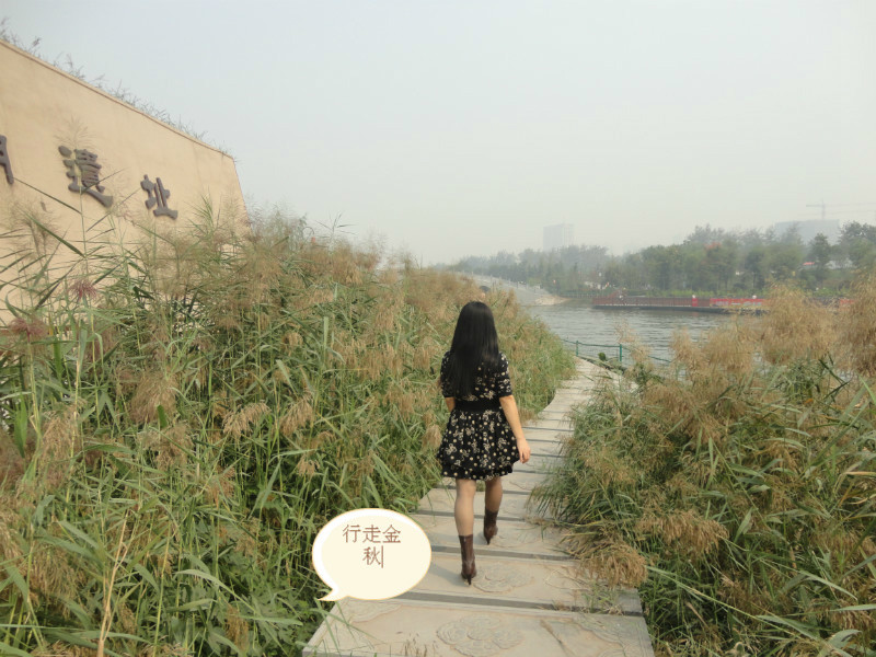 嗨!秋天,你好!       天朗气清,天高云淡,在这美丽的假期,出游,去省城西安走一走,行走在秋天的风景线。       金秋画卷徐徐展开,汉城湖的风姿映入眼帘。青山绿水,亭台塔楼,垂柳拂堤,绿树掩映。桂花的香味袅袅绕绕,芳香馥郁,沁人心脾。我们沿着垂柳依依的石板小径悠然绕湖一周,一路上耳濡目染的是汉朝浓郁的文化气息,古风古韵格调雅致。处处可见刻于石壁上的古文诗句,诗意盎然,无不昭示着汉文化的繁荣昌盛。       清凉山公园是去年十月一日刚开放的新园林,绿草茵茵,树木林立,园内一尘不染,干净宜人。偶