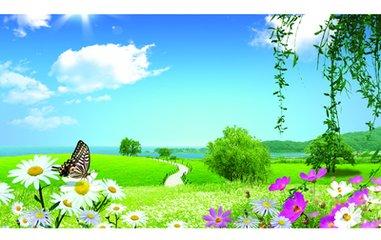 【原创】花开的季节有孤独 - 漂泊的云 - 漂泊的云的博客