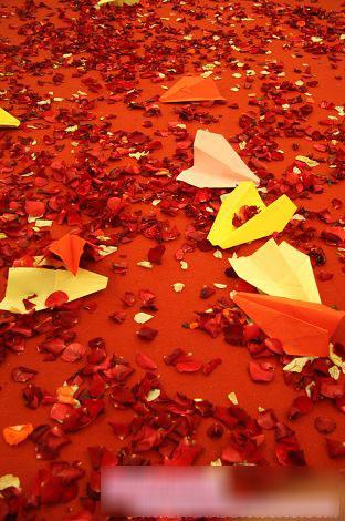 江江喜欢玩纸飞机,而佑佑折出来的纸飞机又是全班同学里最漂亮的,因而