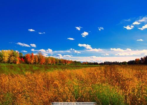 """林语堂先生说:""""看到秋天的云彩,原来生命别太"""