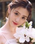 【丹枫】太行玫瑰(散文)