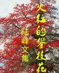 """【荷塘""""pk大奖赛""""】罗公公(散文)"""