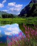 【柳岸•爱】那山•那水•那情(散文)