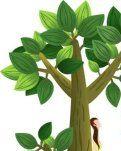 【柳岸】树(组诗)