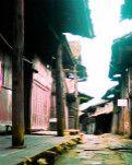 【江山人赏江山文】送别老街不堪重负的美(柳岸)
