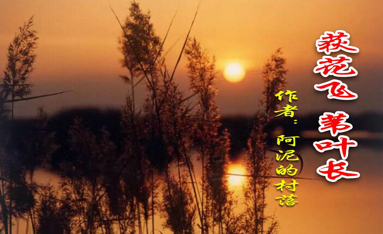 【八一】荻花飞,苇叶长(小说·旗帜)