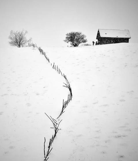【流年】雪中呓语(诗歌)