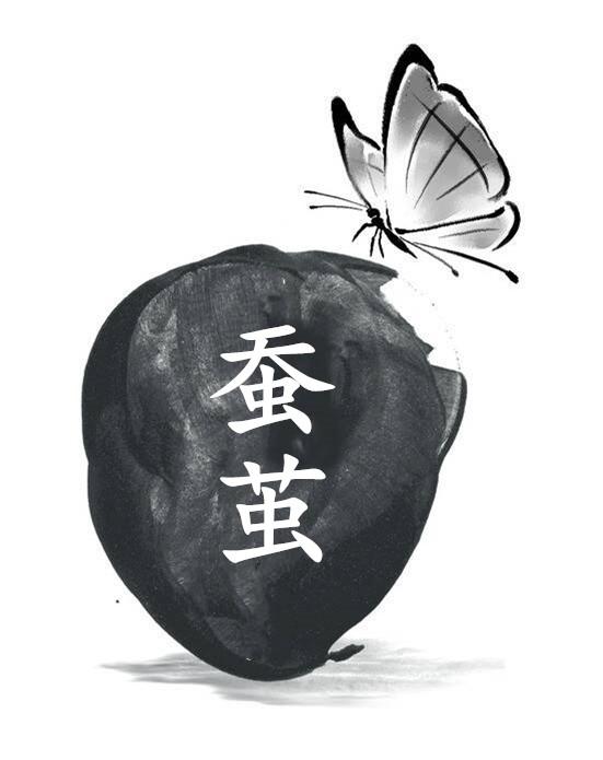 【柳岸•韵】蚕茧(散文)