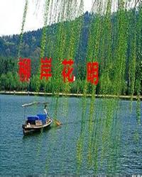 【十年江山情】江山一月(散文)
