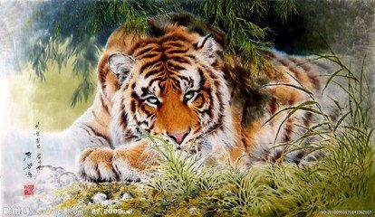 那只卧虎仍然微眯着眼睛,缝隙里遮不住蔑视的虎视眈眈,脸上却不动声色