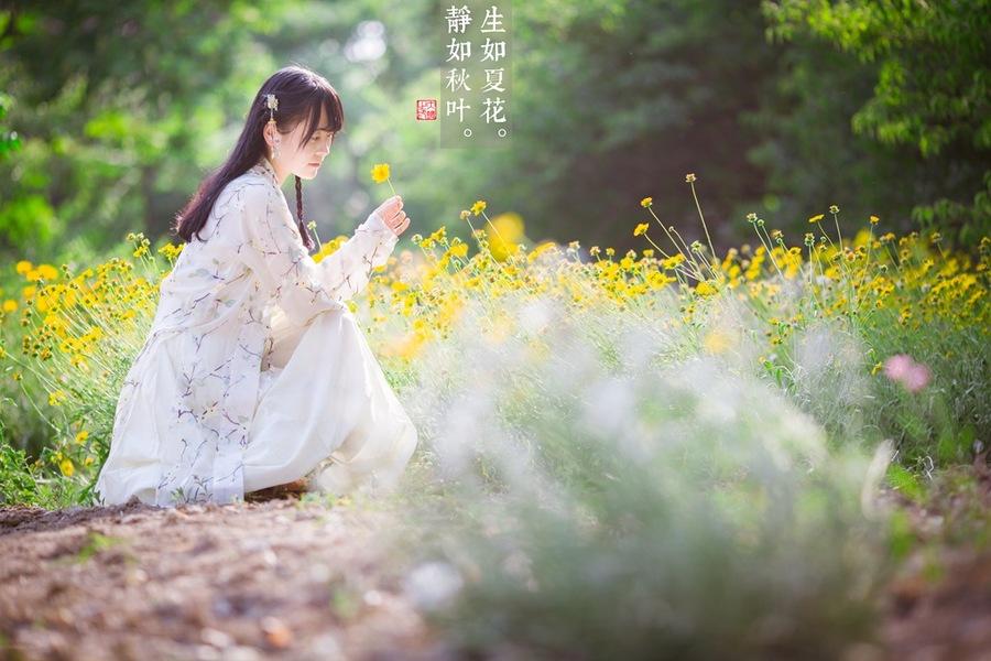 【丁香•守望花开】生如夏花(散文)