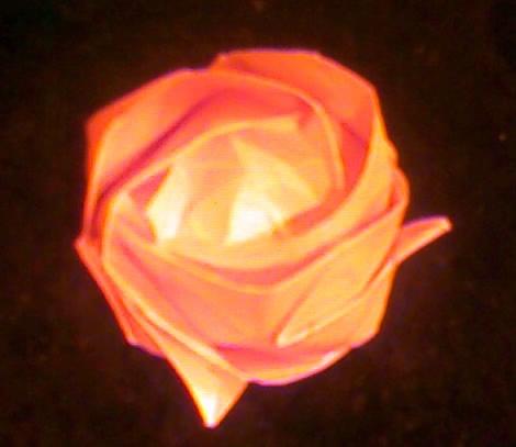 【清韵】纸玫瑰(小说)