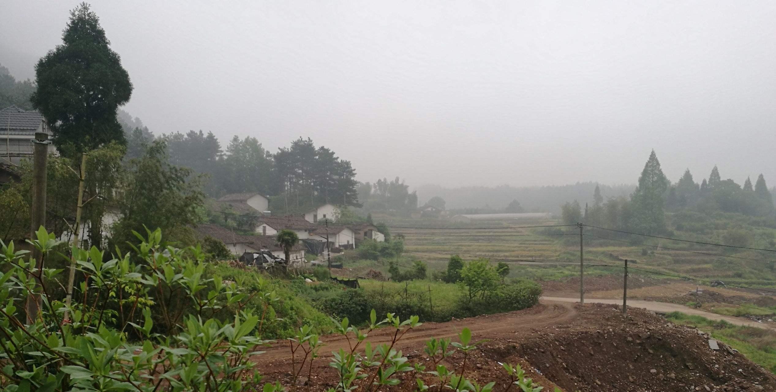 【晓荷·遇见】风吹过的村庄(小说)