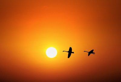 【渔舟•光明】光明的季节,我们裸身于生活(诗歌)
