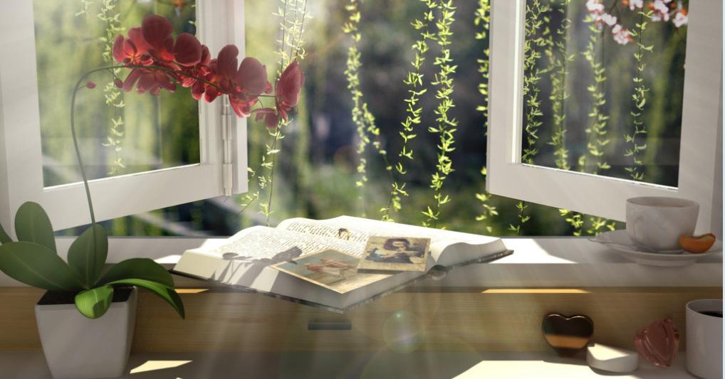 【酒家】悬在窗口的幸福(散文)