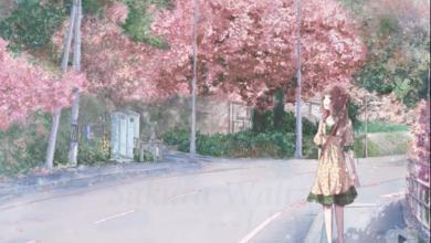 适合樱花雨梦的qq头像