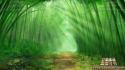 蜜蜜的竹林穿过淡淡的雨雾,像云朵般的缠绵,如水的月光下,青