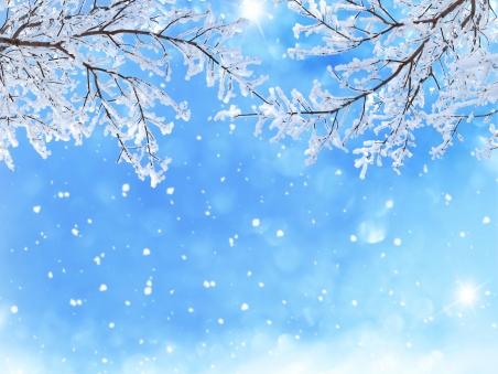 【八一】冬雪的思念(散文·家园)