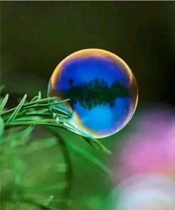 【风恋】一滴水的世界(组诗)