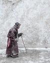 大雪将至寒彻骨