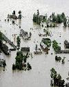 洪水淹没我...